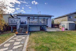 Photo 37: 314 Nelson Road: Carseland Detached for sale : MLS®# A1040058