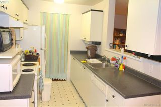 Photo 9: 207 2527 Quadra St in VICTORIA: Vi Hillside Condo for sale (Victoria)  : MLS®# 774873
