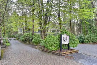 """Main Photo: 20 2978 WALTON Avenue in Coquitlam: Canyon Springs Townhouse for sale in """"CREEK TERRACES"""" : MLS®# R2357737"""