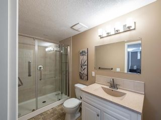 Photo 24: 260 Harvest Grove Place NE in Calgary: Harvest Hills Residential for sale : MLS®# A1062978