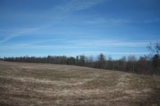Photo 3: 2nd Line in Roseneath: Land Only for sale : MLS®# 188329