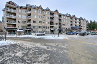 Photo 1: 136 10 Discovery Ridge Close SW in Calgary: Discovery Ridge Apartment for sale : MLS®# A1057299