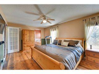 Photo 22: 83 MT SELKIRK Close SE in Calgary: McKenzie Lake House for sale : MLS®# C4066159