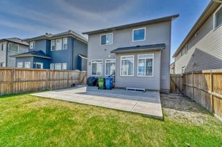 Photo 28: 7 SKYVIEW RANCH Crescent NE in Calgary: Skyview Ranch Detached for sale : MLS®# A1109473