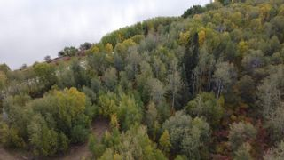 Photo 8: Hwy 11 & RR 53: Rural Parkland County Rural Land/Vacant Lot for sale : MLS®# E4265869