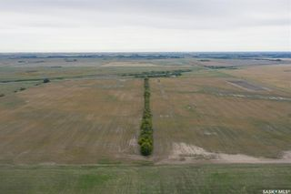 Photo 7: RM of Perdue - 148 Acres in Perdue: Lot/Land for sale (Perdue Rm No. 346)  : MLS®# SK870827