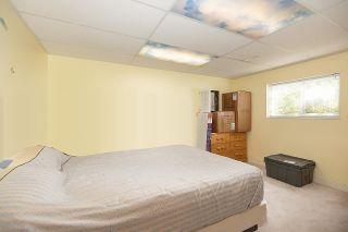 Photo 21: 7841 SWANSON Drive in Delta: Scottsdale House for sale (N. Delta)  : MLS®# R2580723