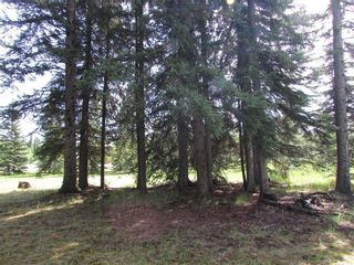 Photo 18: 127, 5241 TWP Rd 325A: Rural Mountain View County Land for sale : MLS®# C4299936