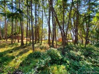 Photo 3: lot 7 Salal Dr in : Isl Mudge Island Land for sale (Islands)  : MLS®# 863615