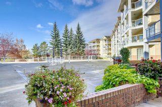 Photo 15: 140 2741 55 Street in Edmonton: Zone 29 Condo for sale : MLS®# E4266491
