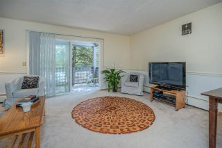 "Photo 5: 329 204 WESTHILL Place in Port Moody: College Park PM Condo for sale in ""WESTHILL PLACE"" : MLS®# R2496106"