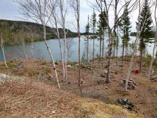 Photo 11: Gillis Point Road in Gillis Point: 209-Victoria County / Baddeck Vacant Land for sale (Cape Breton)  : MLS®# 202120644