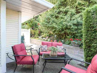 """Photo 31: 129 8737 212 Street in Langley: Walnut Grove Townhouse for sale in """"Chartwell Green"""" : MLS®# R2490439"""
