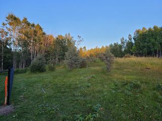 Photo 4: 197 Rolling  Acres Drive in Rural Rocky View County: Rural Rocky View MD Residential Land for sale : MLS®# A1142888
