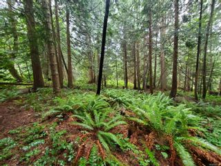 Photo 12: 0 S Keith Dr in : Isl Gabriola Island Land for sale (Islands)  : MLS®# 863104