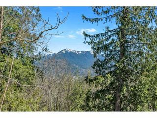 Photo 11: 47673 FORESTER Road: Ryder Lake House for sale (Sardis)  : MLS®# R2566929