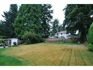 Photo 13: 817 COTTONWOOD Avenue in Coquitlam: Coquitlam West House for sale : MLS®# V1020762