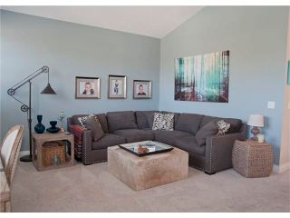 Photo 21: 67 CHAPMAN Way SE in Calgary: Chaparral House for sale : MLS®# C4065212