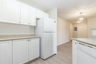 Photo 17: 306 2000 Citadel Meadow Point NW in Calgary: Citadel Apartment for sale : MLS®# A1055011