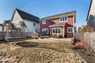 Photo 34: 2037 ROCHESTER Avenue in Edmonton: Zone 27 House for sale : MLS®# E4231401