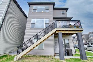 Photo 45: 143 Nolanhurst Rise NW in Calgary: Nolan Hill Detached for sale : MLS®# A1110473