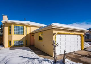 Photo 1: 25 Millbank Bay SW in Calgary: Millrise Detached for sale : MLS®# A1072623