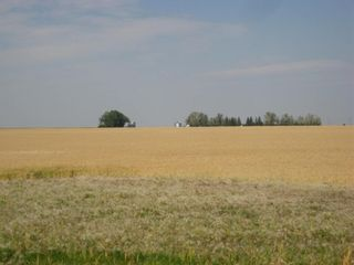 Photo 4: SE 20 30 1 W5 Highway 2A: Carstairs Residential Land for sale : MLS®# A1067588