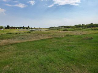 Photo 4: R-12 Two-51: Rural Minburn County Rural Land/Vacant Lot for sale : MLS®# E4237133