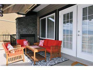 "Photo 17: 12491 201ST Street in Maple Ridge: Northwest Maple Ridge House for sale in ""MCIVOR MEADOWS"" : MLS®# V1017589"