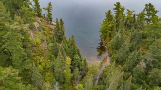 Photo 20: Lot 8 Five Point Island in South of Kenora: Vacant Land for sale : MLS®# TB212085