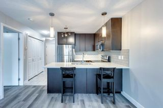 Photo 14: 338 35 Richard Court SW in Calgary: Lincoln Park Apartment for sale : MLS®# A1124714