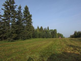 Photo 14: 39-33048 Range Road 51: Rural Mountain View County Land for sale : MLS®# A1085992