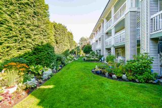 """Photo 16: 335 22020 49 Avenue in Langley: Murrayville Condo for sale in """"MURRAY GREEN"""" : MLS®# R2486605"""