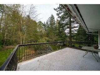 Photo 13: 2350 170 Street in Surrey: Pacific Douglas House for sale (South Surrey White Rock)  : MLS®# R2426011