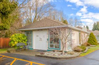 """Photo 28: 137 10172 141 Street in Surrey: Whalley Townhouse for sale in """"Camberley Green"""" (North Surrey)  : MLS®# R2543394"""