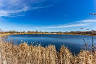 Photo 44: 118 Houle Drive: Morinville House for sale : MLS®# E4239851