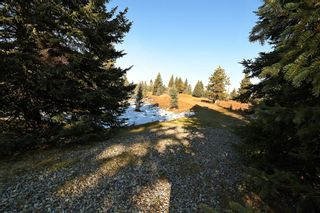 Photo 24: 20.02 Acres +/- NW of Cochrane in Rural Rocky View County: Rural Rocky View MD Land for sale : MLS®# A1065950