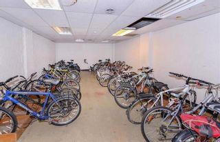 Photo 15: 101 1870 McKenzie Ave in : SE Lambrick Park Condo for sale (Saanich East)  : MLS®# 864072