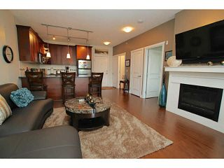 "Photo 7: 402 2330 SHAUGHNESSY Street in Port Coquitlam: Central Pt Coquitlam Condo for sale in ""AVANTI ON SHAUGHNESSY"" : MLS®# V1143520"