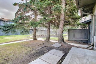 Photo 48: 161 7172 Coach Hill Road SW in Calgary: Coach Hill Row/Townhouse for sale : MLS®# A1101554