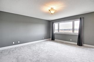 Photo 29: 167 COVE Close: Chestermere Detached for sale : MLS®# A1090324