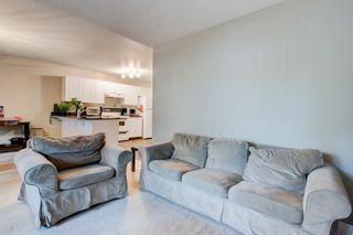 Photo 43: 202 8503 108 Street in Edmonton: Zone 15 Condo for sale : MLS®# E4253305