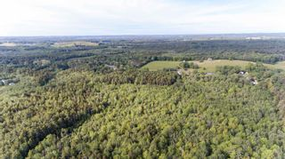 Photo 15: Lots St. Phillips Street in Bridgewater: 405-Lunenburg County Vacant Land for sale (South Shore)  : MLS®# 202115973