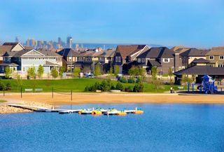 Photo 46: 301 30 Mahogany Mews SE in Calgary: Mahogany Apartment for sale : MLS®# A1094376