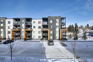 Photo 29: 1214 1317 27 Street SE in Calgary: Albert Park/Radisson Heights Apartment for sale : MLS®# A1070398