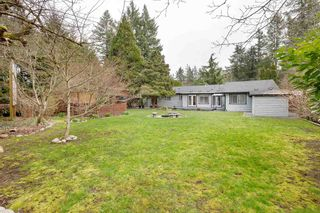 Photo 34: 3681 207B Street in Langley: Brookswood Langley House for sale : MLS®# R2560476