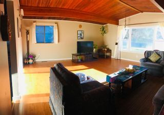 Photo 13: 4931 Brisebois Drive NW in Calgary: Brentwood Detached for sale : MLS®# A1131084