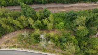 Photo 8: 8655 PROCTER EAST ROAD in Procter: Vacant Land for sale : MLS®# 2460291
