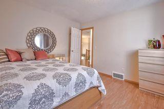 Photo 36: 182 BRIDLECREST Boulevard SW in Calgary: Bridlewood Detached for sale : MLS®# C4286650