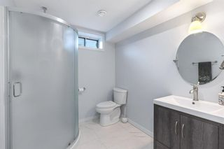 Photo 18: 2339 Maunsell Drive NE in Calgary: Mayland Heights Detached for sale : MLS®# A1059146